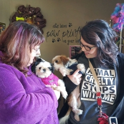 Bitsy, fostered by Kari Taylor & BYRON, fostered and adopted by Danielle Weiler