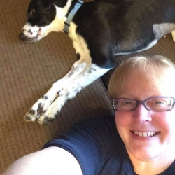 BAILEY, fostered by Ken & Theresa Snider