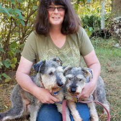 WILLIS, fostered by Sally Vincent